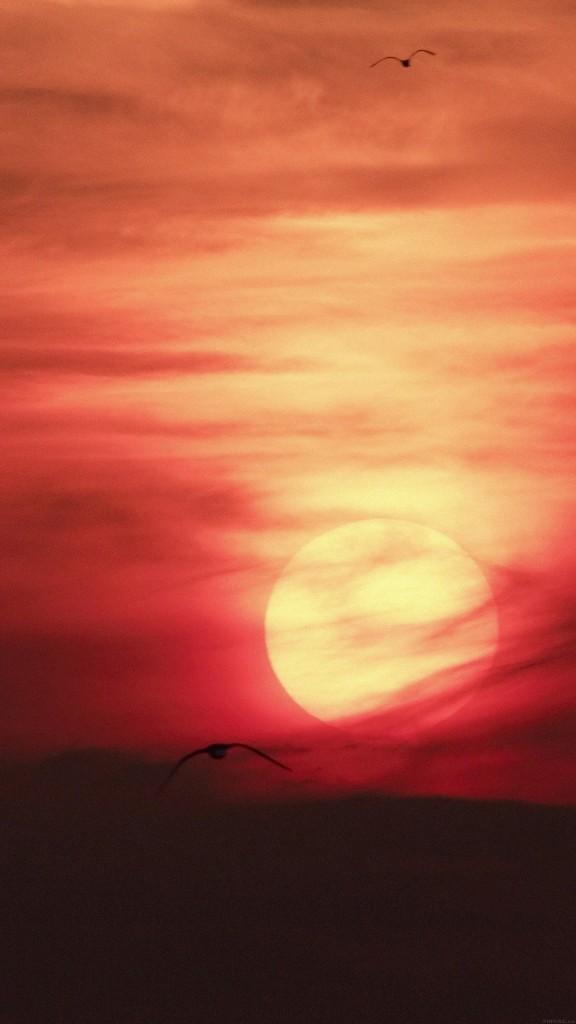 Artistic-Red-Sunset-Desert-iPhone-6-plus-wallpaper-ilikewallpaper_com