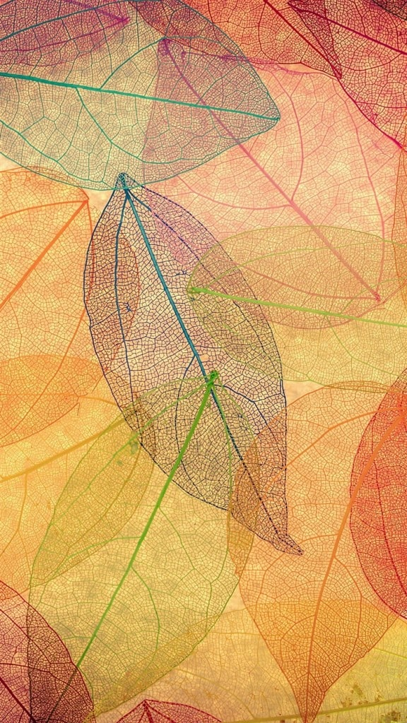 Rainbow-Color-Leaf-Art-Fall-Nature-Pattern-iPhone-6