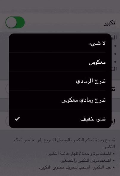 app26
