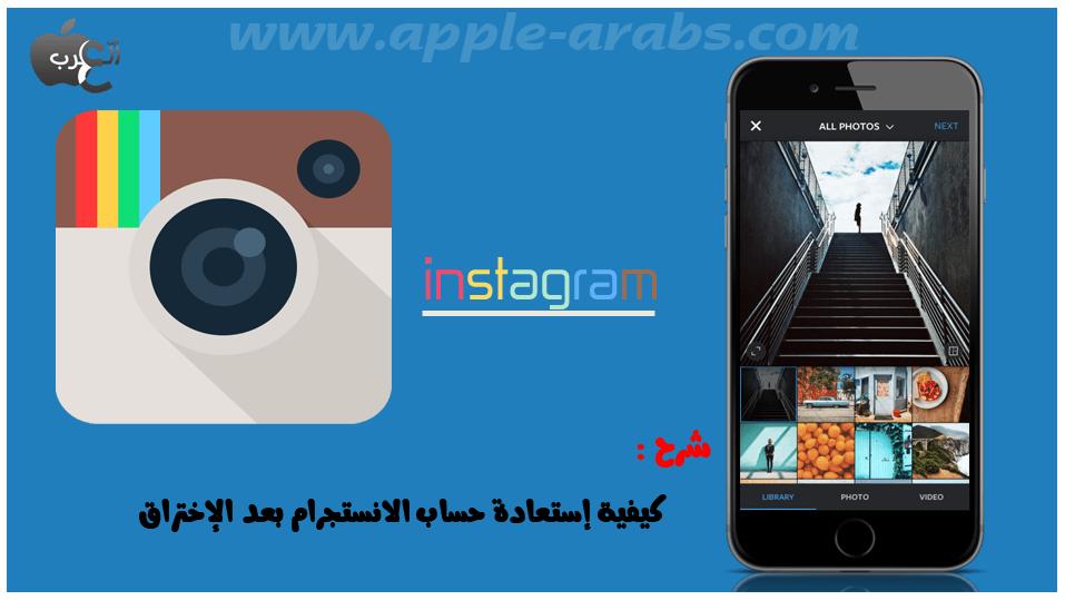 logo_instagram2